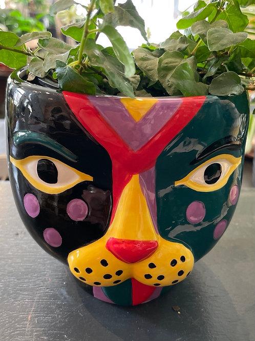 """Leopard Pot Green/Black (4"""" pot fits)"""