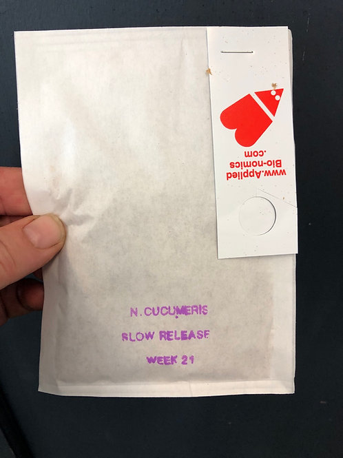 Biological Insect Control Packet  ( Thrip catcher)