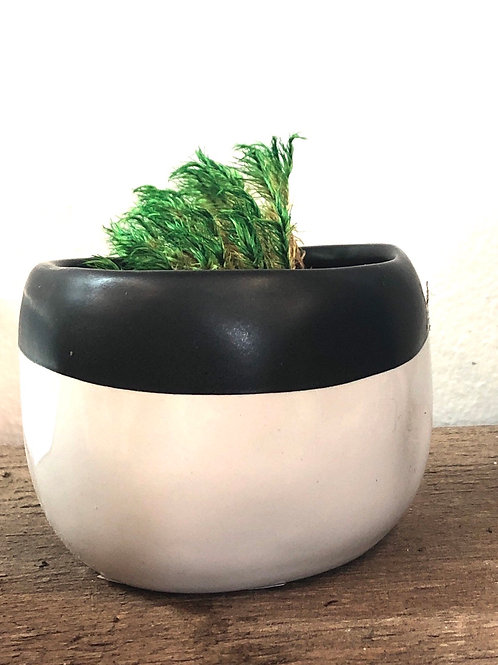 "Black/White Tiny Low Pot 3""/2""H"