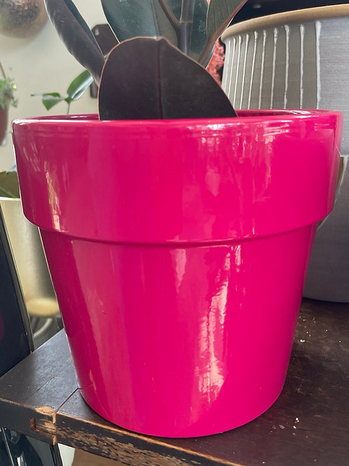 """Hot Pink 6"""" Pot"""