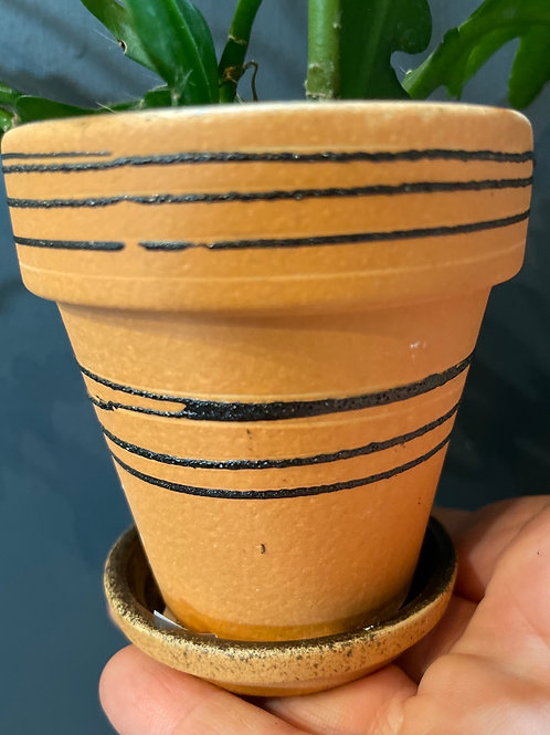 """Terracotta Pot with Lines 3"""""""