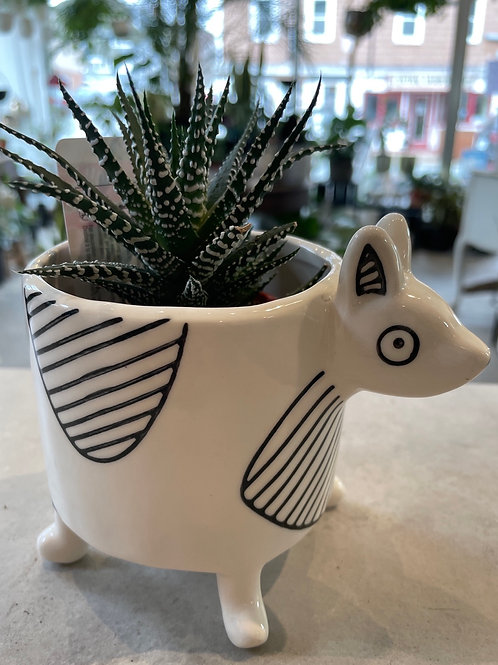 Doggy Pot with Legs