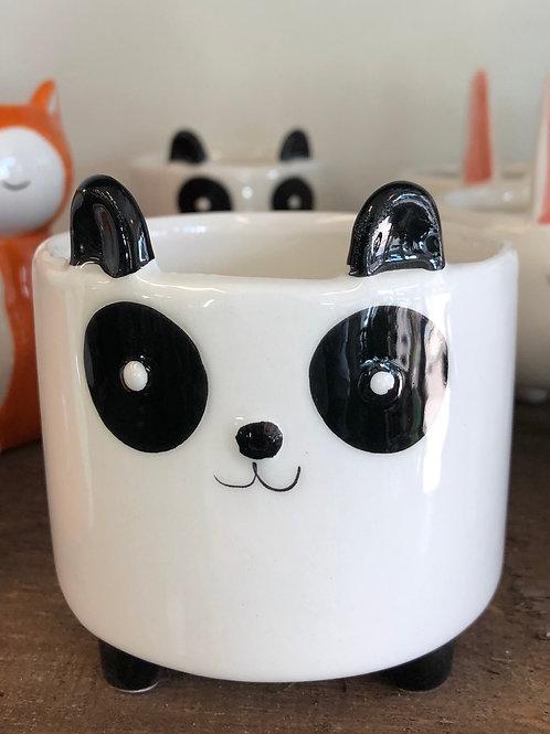 """Wee Panda Pot 3"""" opening"""