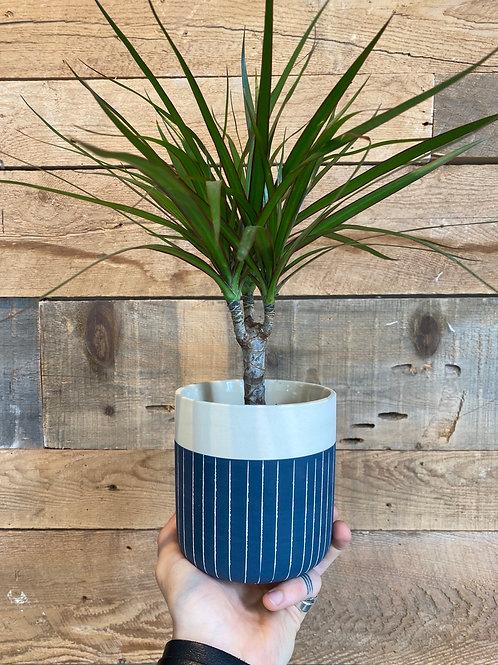 "Blue Pinstripe Pot 4"""