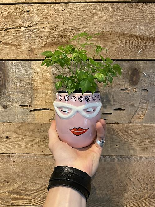 """Funky Lady Pot 4"""""""