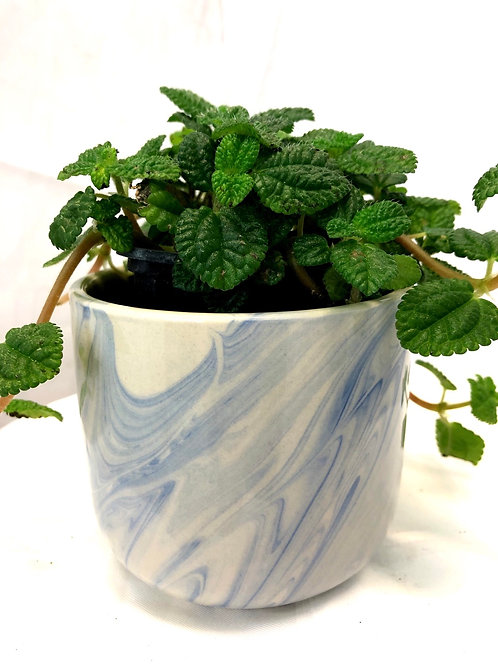 Blue Swirl Pot 4.5""