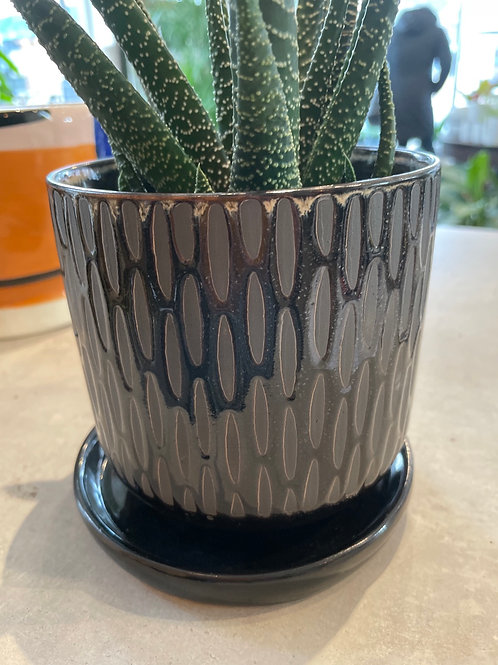 """Black Textured Pot 5"""" ( drainage hole and saucer)"""