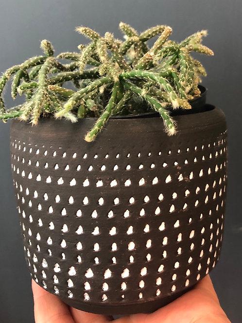 "Loon Pattern Pot (4"" diameter,3.5"" ht)"