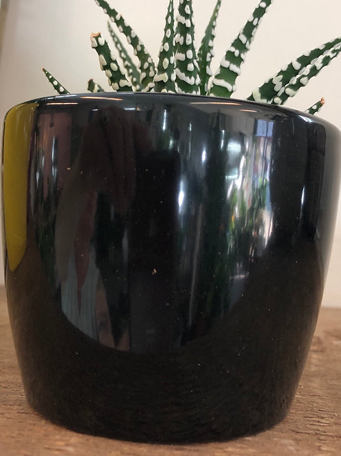 "Small 3"" Black Pot"