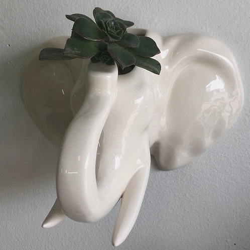 "Elephant Head Wall Planter 4"""