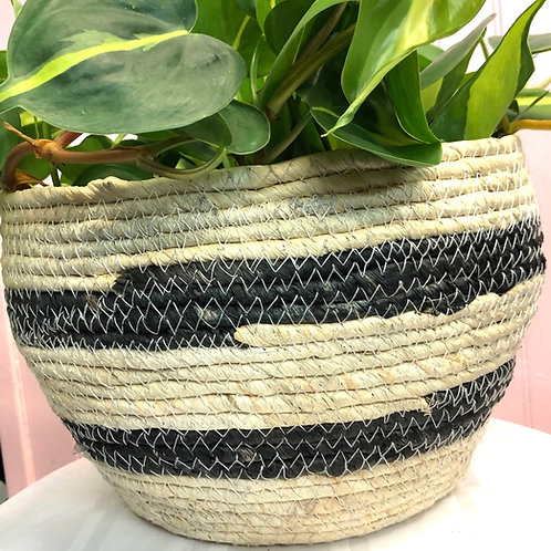 Black Stripe Basket 7.5""