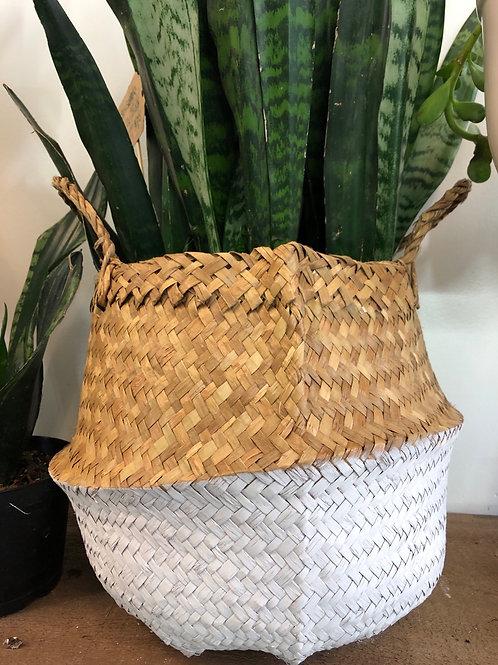 "White/ Natural Basket Pot 10"""