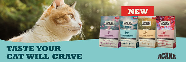 AOP_ACA cat new recipe banner_1200 x 400