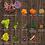 Thumbnail: Pet Cubes Complete Kangaroo Premium