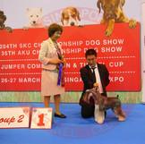 art-of-pets-grooming-school-park-sang-hu