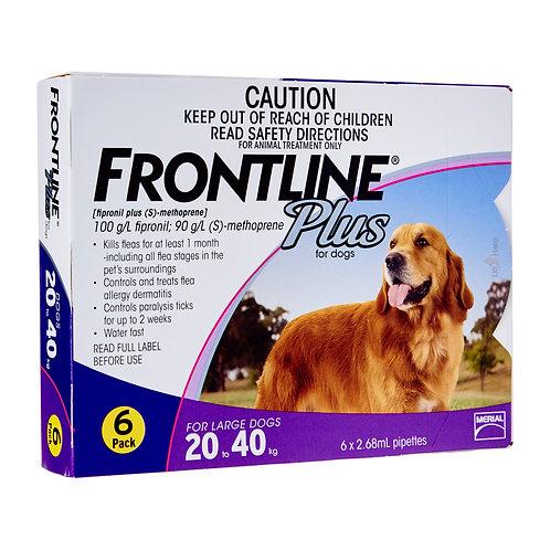 Frontline Plus 6's 20-40kg