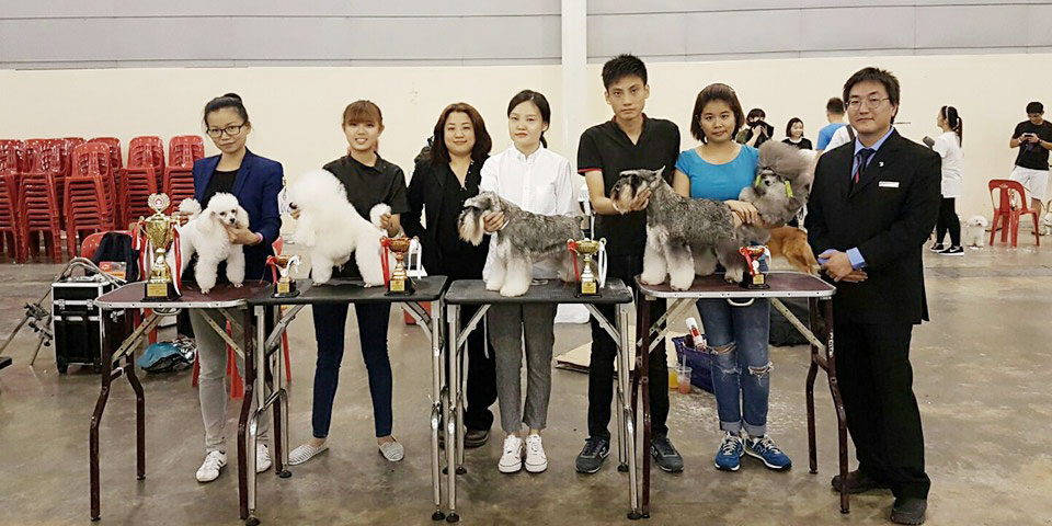1st Elite Grooming Competition