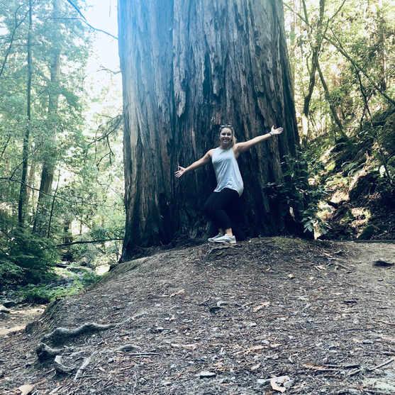 Visiting Muir Woods in California