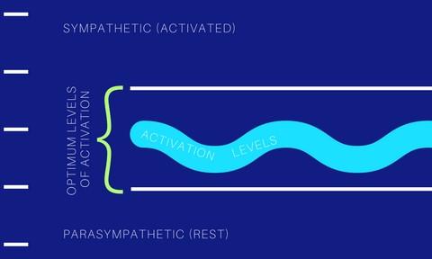 Optimum levels of activation