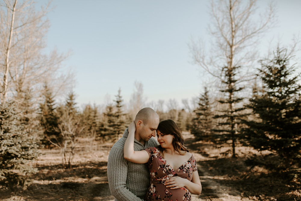 fish creek park maternity session