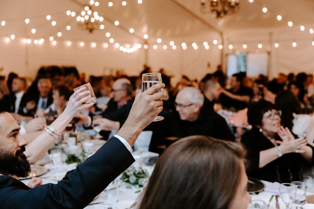 reception cheers meadow muse wedding