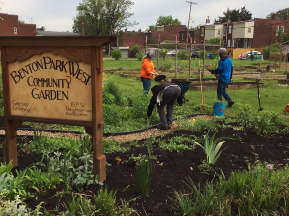 Community Garden April 2017