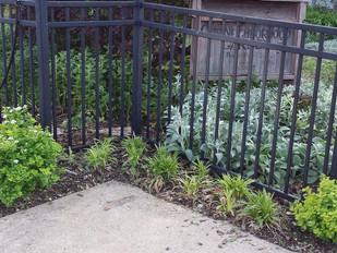 Our Neighborhood Garden - Donate and Volunteer