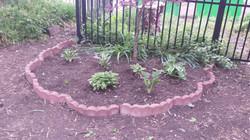 Our Neighborhood Garden Spring 2016