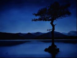 Lonely Tree at Loch Lamond