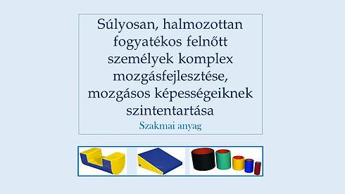 szakmai.anyag.borito3.jpg