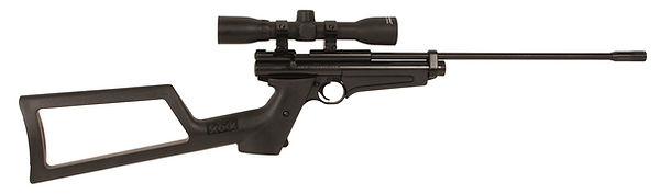 Crosman 2250 XL.jpg