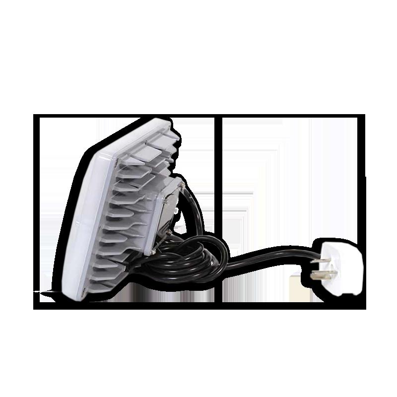 ZY 8800 LED light