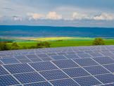 solar-farm-planting-ISRAEL