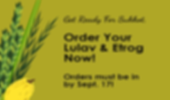lulav and etrog orders less text.png