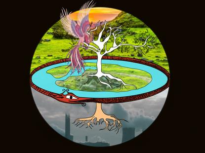 Saena Tree