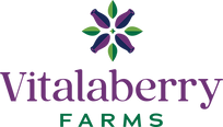 Vitalaberry_logo.png