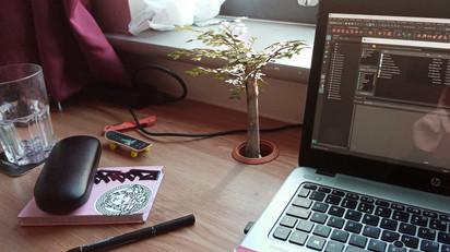 tree-desk.jpg