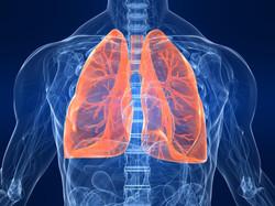 pulmonoogist