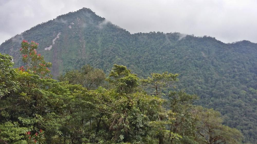 Anchicaya canyon