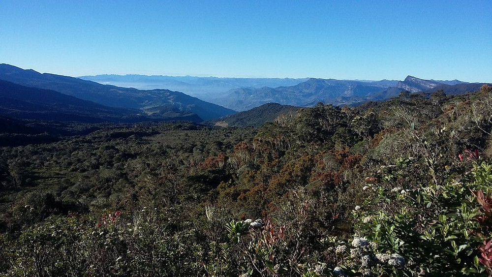 Chingaza scenery