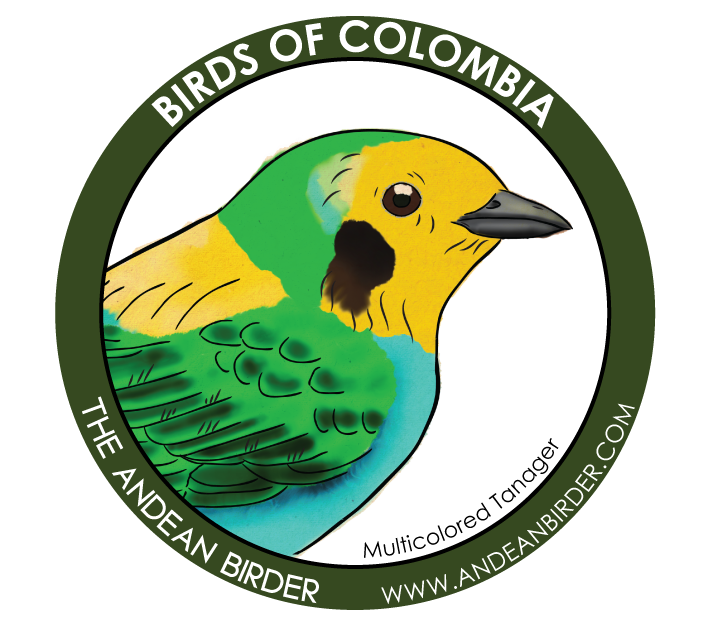 Multicolored Tanager sticker