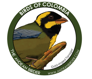 Gold-ringed Tanager sticker
