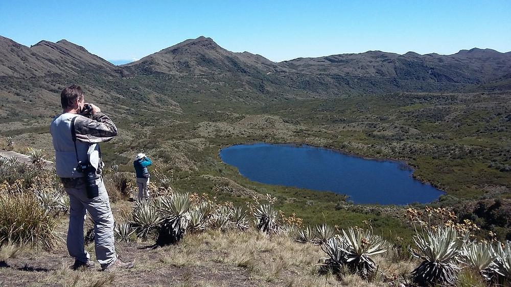 Birding Chingaza National Park