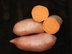 Orleans Sweet Potatoes