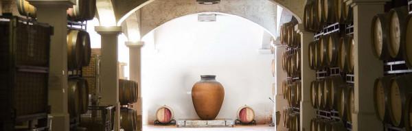 vinho-e-gastronomia-almoo-e-visita-guiad