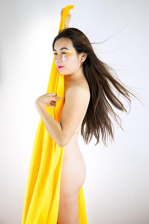 D.S. Yellow
