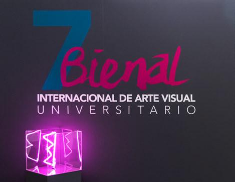 7 Bienal Internacional de Arte Visual Universitario