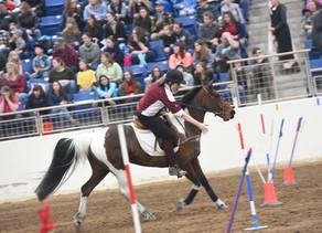 PA Horse World Expo 2019
