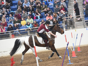 PA Horse World Expo 2019
