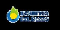 Logo-idroelettrica-dezzo.png